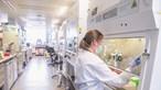 Indefinição atrasa plano da vacina contra a Covid-19 em Portugal