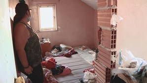 Vivem sem água, esgotos e luz no coração de Lisboa. Conheça osmoradores da Quinta do Ferro agora na CMTV