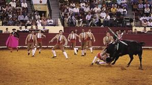 """Setor da tauromaquia diz que proposta do PAN para proibir menores de assistir a touradas é """"inconstitucional"""""""