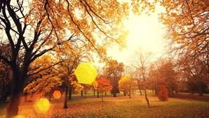 Terça-feira de outono com sol e máximas a chegar aos 24 graus