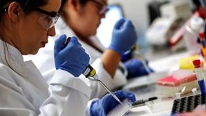 Imunidade à Covid-19 pode durar vários anos ou até mesmo décadas