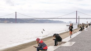 Portugal submerso: ambientalistas pedem medidas urgentes para travar impacto das alterações climáticas