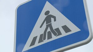 GNR e PSP lançam campanha de alerta para evitar atropelamentos