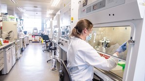 Portugal assegura vacina de Oxford contra a Covid-19