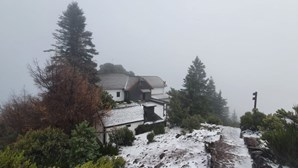 Neve pinta ilha da Madeira de branco. Veja as imagens