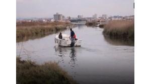 Projetos portugueses aproveitam mais valias dos recursos marinhos