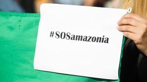 """Jovens ativistas recusam rótulo de """"pirralhos"""" e arrecadam 160 mil euros para a Amazónia"""