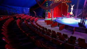 Marcelo reconhece dificuldades dos artistas de circo e espera que voltem aos espetáculos