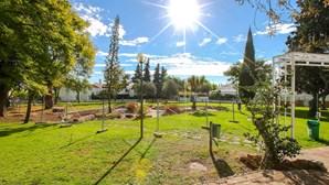 Jardim do Montechoro vai ser recuperado até ao final do ano