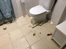 Píton encontrada na casa de banho da família
