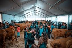 Agrovouga é um evento para o setor agropecuário