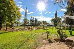 Jardim do Montechoro vai ser intervencionado