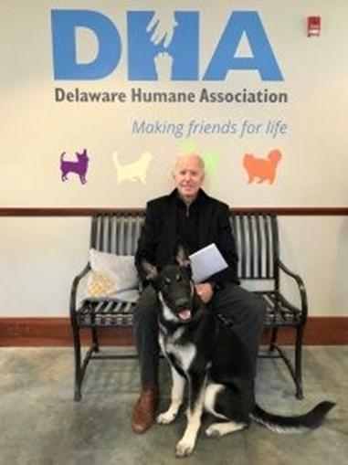 Joe Biden leva dois cães para viver na Casa Branca e recupera tradição