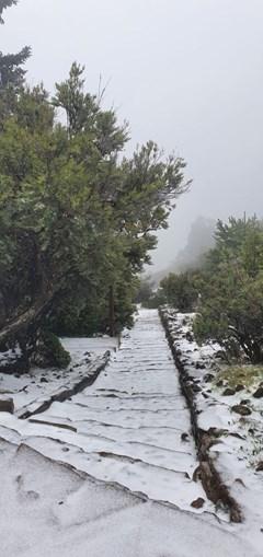 Neve pinta ilha da Madeira de branco