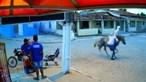 Ladrões encapuzados chegam a cavalo e assaltam mercearia mas são apanhados pela videovigilância. Veja as imagens