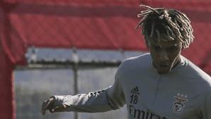Jorge Jesus nunca contou com Todibo no Benfica