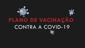 Grupos prioritários, fases e objetivos: tudo sobre a vacinação contra a Covid-19 que arranca em janeiro