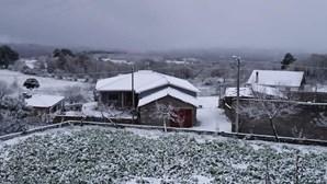 Neve provocada por depressão Dora já começou a cair. Veja as imagens do manto branco
