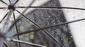 Não se esqueça do guarda-chuva: Terça-feira marcada por aguaceiros e subida da temperatura