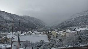Neve, queda de árvores e estradas cortadas. As imagens do mau tempo de Norte a Sul do País
