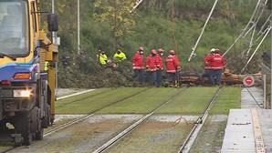 Linha do Metro do Porto interrompida em Gondomar devido a queda de árvore