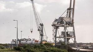 Navio israelita que transportava animais vivos retido no Porto de Sines. Veja as imagens