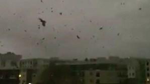 Milhares de corvos pintam céu do Canadá de negro durante 14 horas e lançam pânico de apocalipse