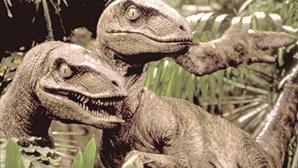 Velociraptors unidos