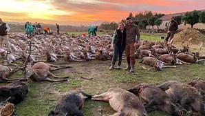 Herdade da Torre Bela apresenta queixa-crime contra promotores da montaria que matou 540 animais