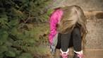 Mãe chantageia filha para calar abusos sexuais do padrasto em Vila Franca de Xira