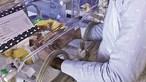 Mulher infetada com Covid-19 e em coma dá à luz bebé prematuro em Lisboa