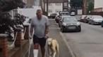 Homem gasta mais de 300 euros em veterinário e descobre que cão estava só a imitá-lo