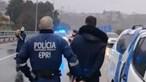 O momento da detenção dos jovens que fugiram à PSP no Porto e quase atropelaram agentes. Veja o vídeo