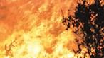 Antigo GNR ateia fogos em Abrantes depois de sair da prisão
