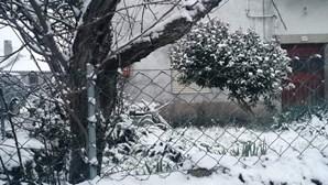 Portugal vestido de branco. As imagens das localidades onde a neve se tornou protagonista este sábado