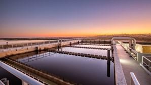 A Águas do Algarve, S.A. é parceira do projeto de I&D WATER-MINING