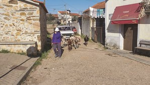 Aldeia em Arganil contaminada com Covid-19 após convívio de Natal