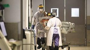 2019 ou 290? Polémica sobre número oficial de mortos por Covid-19 no pior dia de sempre