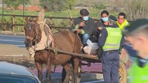 Seis condutores multados na hora em Lagoa durante fiscalização das autoridades