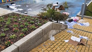 Centro Cívico em Baião vandalizado durante a madrugada