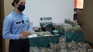 Aldeias em Portugal usadas por traficantes de droga