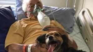 Idoso de 92 anos com Covid-19 recebe visita surpresa da cadela no hospital