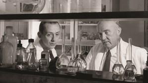 A descoberta que dá esperança: Insulina faz cem anos