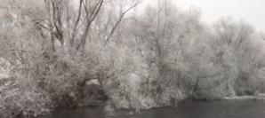 Névoa em suspensão congela e cai em forma de flocos de gelo em Chaves