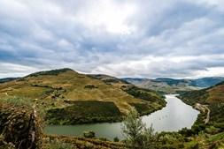 Vinha Douro