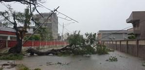 Ciclone Eloise faz pelo menos três mortos na cidade da Beira em Moçambique