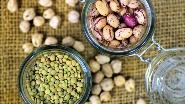 Baixas em gorduras e ricas em proteínas: Conheça o mundo das leguminosas e os seus benefícios