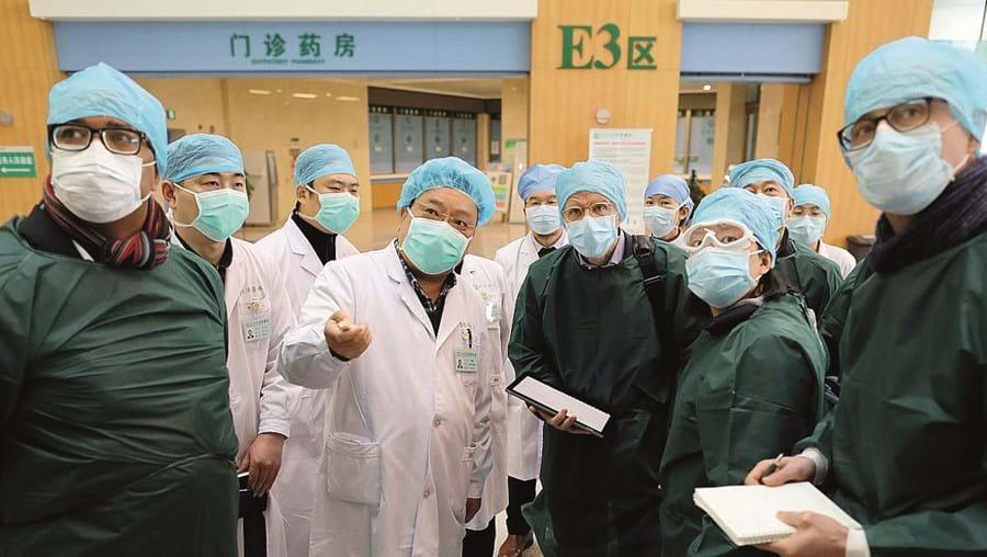 Peritos da OMS vão procurar respostas para a origem da pandemia