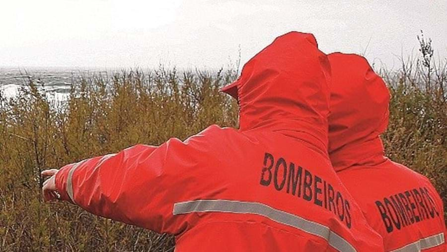 Bombeiros, buscas, xxx
