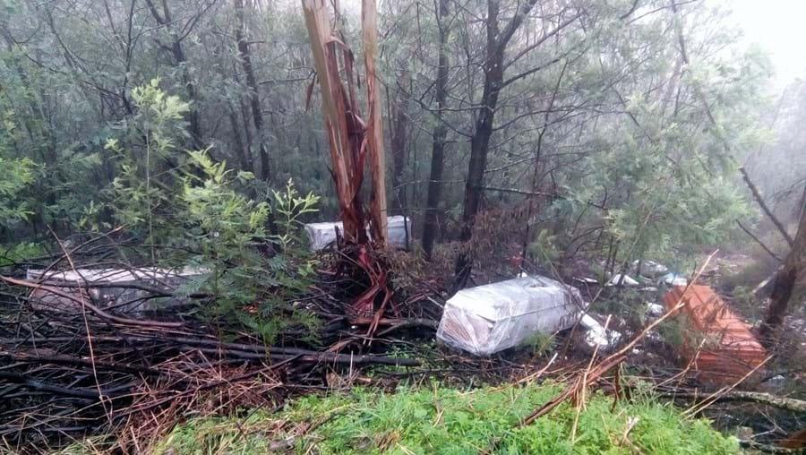 Caixões com 20 anos abandonados em ravina em Anadia